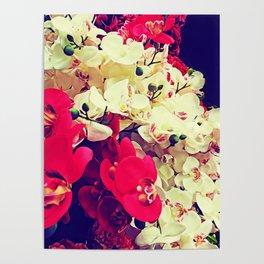 Orchidea boom Poster