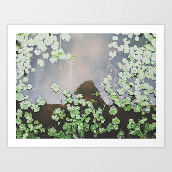 Wetland Mirror Art Print