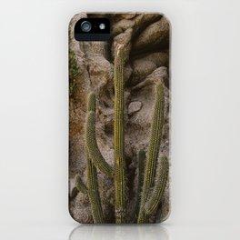 Cabo Cactus III iPhone Case