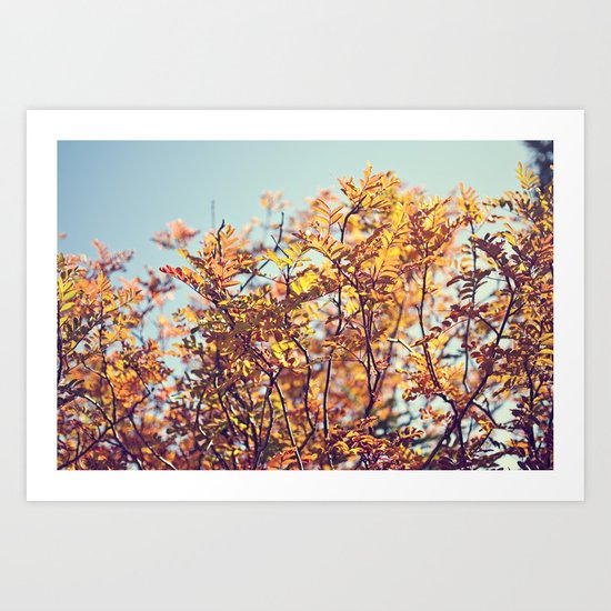 Mountain Fall Art Print