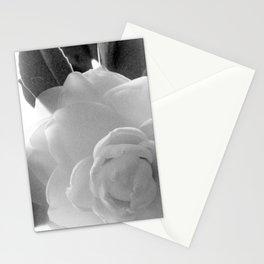 Petals B&W Stationery Cards