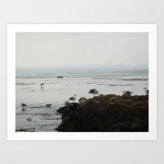 Monterey California Art Print