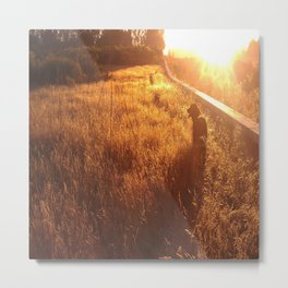 hovawart dog in the sun Metal Print
