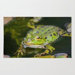 Green European Frog Rug