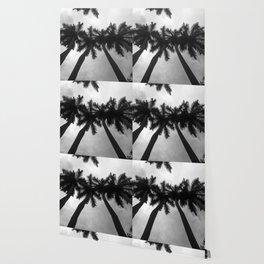 Palm Trees Landscape 06 Wallpaper