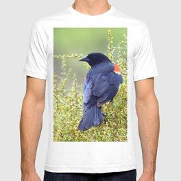 Tijuana Slough Male Redwing Blackbird T-shirt