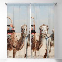 Camel blue eyes   Agafay desert   Morocco   Africa   bright colors   pastel colors   dromedary   animal   art print   travel print   travel photography Blackout Curtain