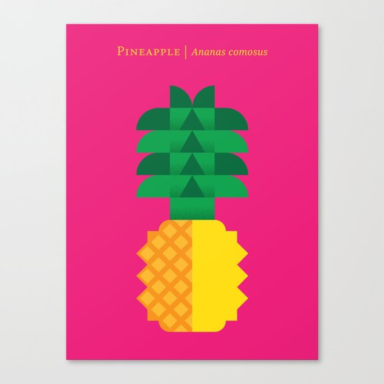 Fruit: Pineapple Canvas Print