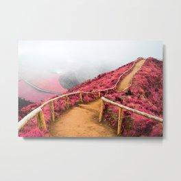 Empty walking trail Metal Print