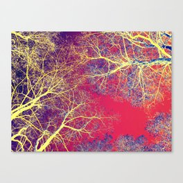 The Fairy Forest #2 Canvas Print