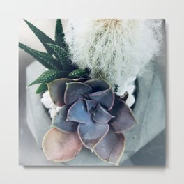 Succulent Fuzzy Garden in Blues, Greens and Pink Metal Print