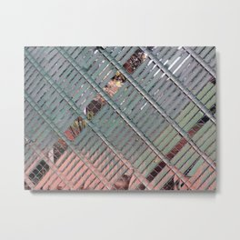 Privacy Metal Print