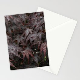 Water droplets on Acer leaves Stationery Cards