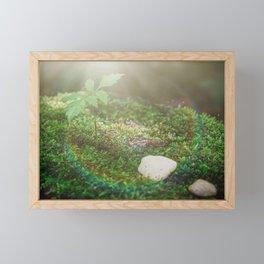 moss on the stone Framed Mini Art Print