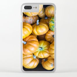 Pile of Mini Pumpkins for sale Clear iPhone Case
