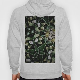 Succulents on Show No 1 Hoody