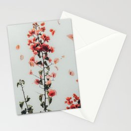 Natural Chaos Stationery Cards