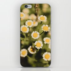 Little bits of sunshine iPhone & iPod Skin