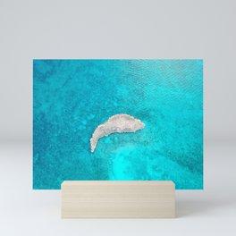 Water clear Mini Art Print