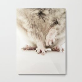 Chinchilla Hands = The Cutest Hands Metal Print