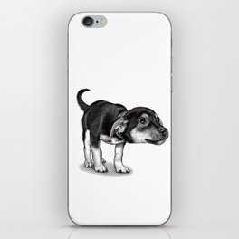 Cute cautious puppy wagging it's tail. iPhone Skin