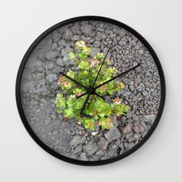 Nature always pulls through Wall Clock