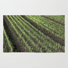 Fertile Farmland Rug
