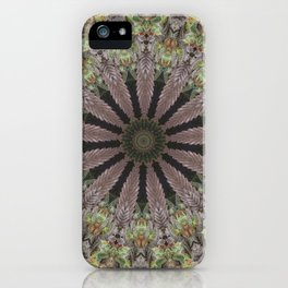 Sugar Garden iPhone Case