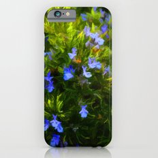 Rosemary iPhone 6s Slim Case