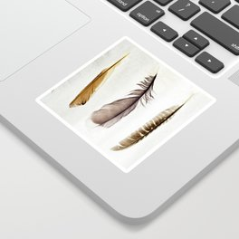 Five Feathers Sticker