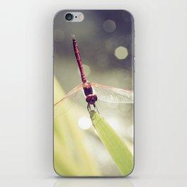Midsummer Dragonfly - Macro photography iPhone Skin