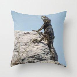 Lizard Sunbathing On A Rock Vector Throw Pillow