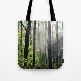 Spring In The Woods Tote Bag