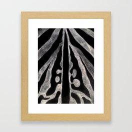 Animal 2  Framed Art Print