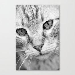 Sephiroth Canvas Print