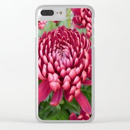 Red chrysanthemum Clear iPhone Case