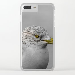 Glaring - Seagull Clear iPhone Case
