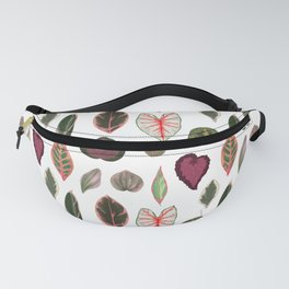 Pink and red leaf species tropical plants illustration Fanny Pack