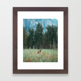 Baby Deer in Yosemite Framed Art Print