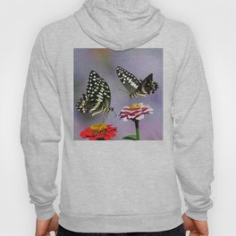 Swallow tail  or Christmas Butterfly Hoody