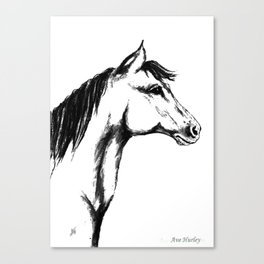 'Another Horse Profile' by Ave Hurley Canvas Print