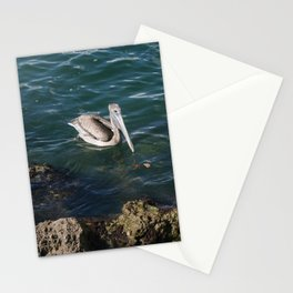 Pelican Paddles DPG160301c Stationery Cards