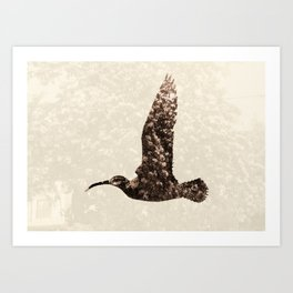 Bird integrated with flowers Art Print