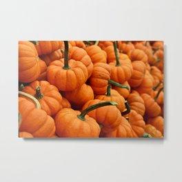 pumpkins, fall  Metal Print