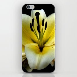 Wonderful Flower yellow and black iPhone Skin
