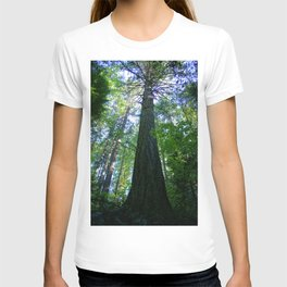 Tall Trees in The Dense Forest T-shirt