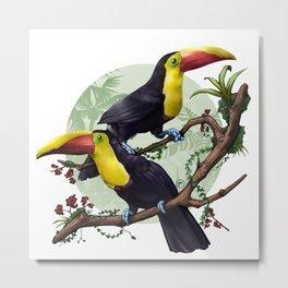 Colorful Toucans Illustration Metal Print