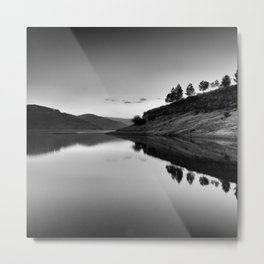 Forest Reflection Bw Metal Print