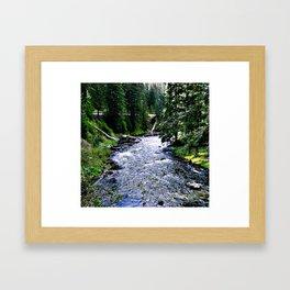 Downstream Framed Art Print