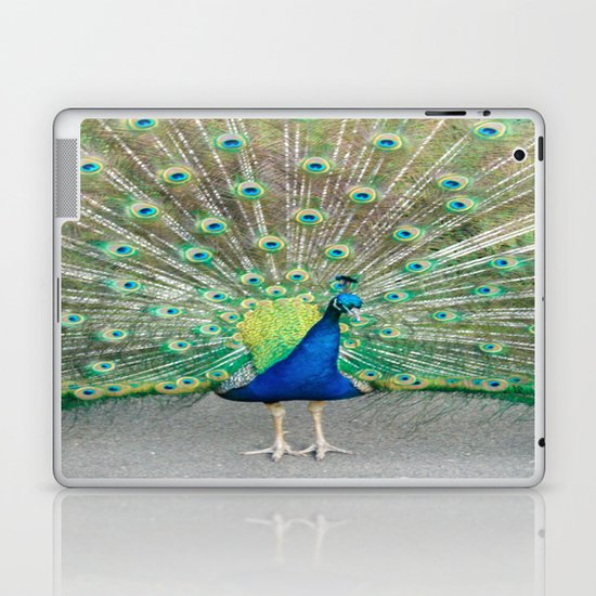 Coat of Many Colors Laptop & iPad Skin